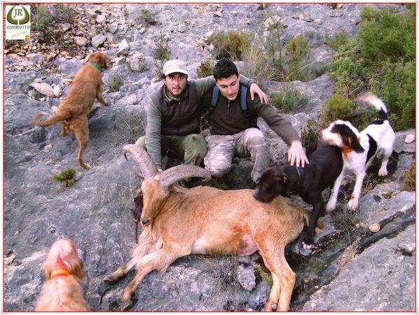 caza-alicante