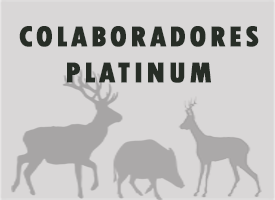 Panel de contenidos para colaboradores Platinum.