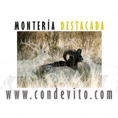 Montería Casas Rubias Hernández Caza y Gestión